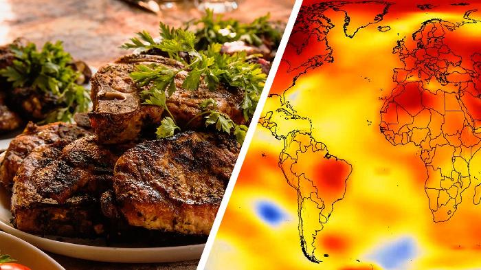 dieta-planetaria-comer-diferente-puede-salvar-planeta-1565331501687